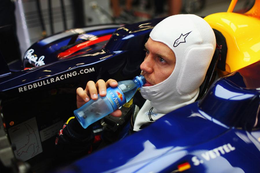 11418 - Vettel signs new trainer