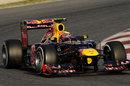 Mark Webber in the Red Bull RB8