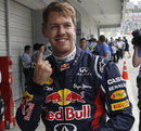 Sebastian Vettel celebrates pole position in his customary style
