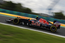 Carlos Sainz at speed on track