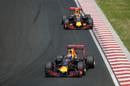 Daniel Ricciardo leads his teammate Max Verstappen
