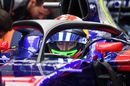 Brendon Hartley looks on from the Toro Rosso cockpit