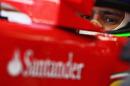 Felipe Massa in the Ferrari pits