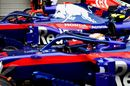 Brendon Hartley and Pierre Gasly pull into parx ferme
