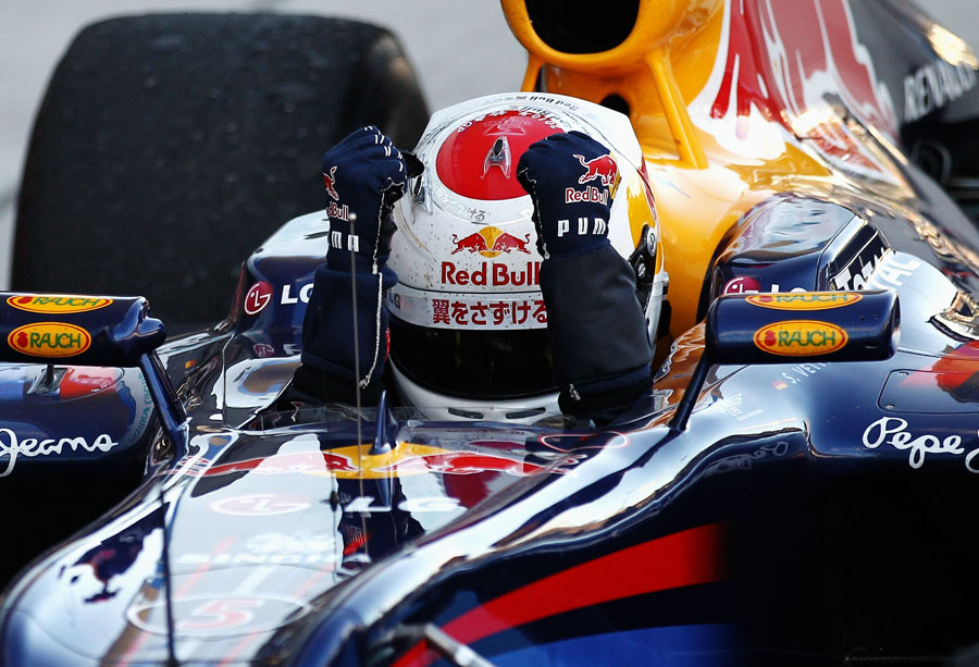 Sebastian Vettel pumps his fists in celebration